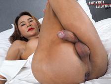 Cock Between Legs Hottie Ladyboy Anny