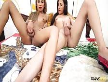 Mariana And Bella Shemale Lesbians