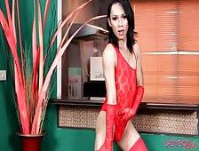 Pattaya Ladyboy Visa Debuts
