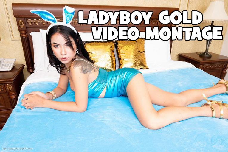 Ladyboy Gold Montage 2021 Update